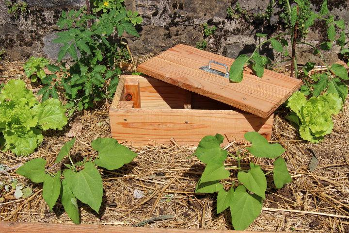 mini lombricomposteur en bois