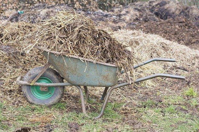 Achat de fumier de vache, une brouette ou une benne : livraison autour de Lyon